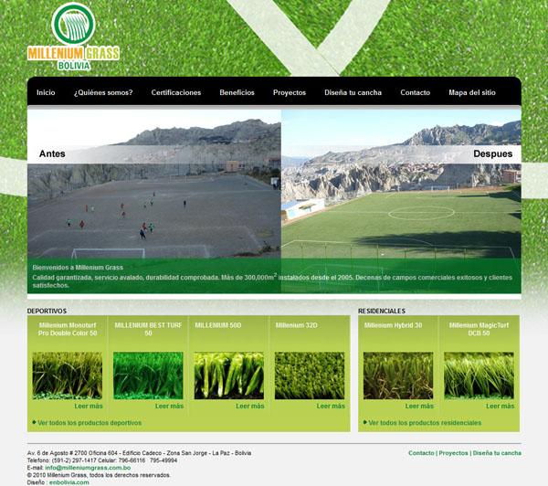 Millenium Grass