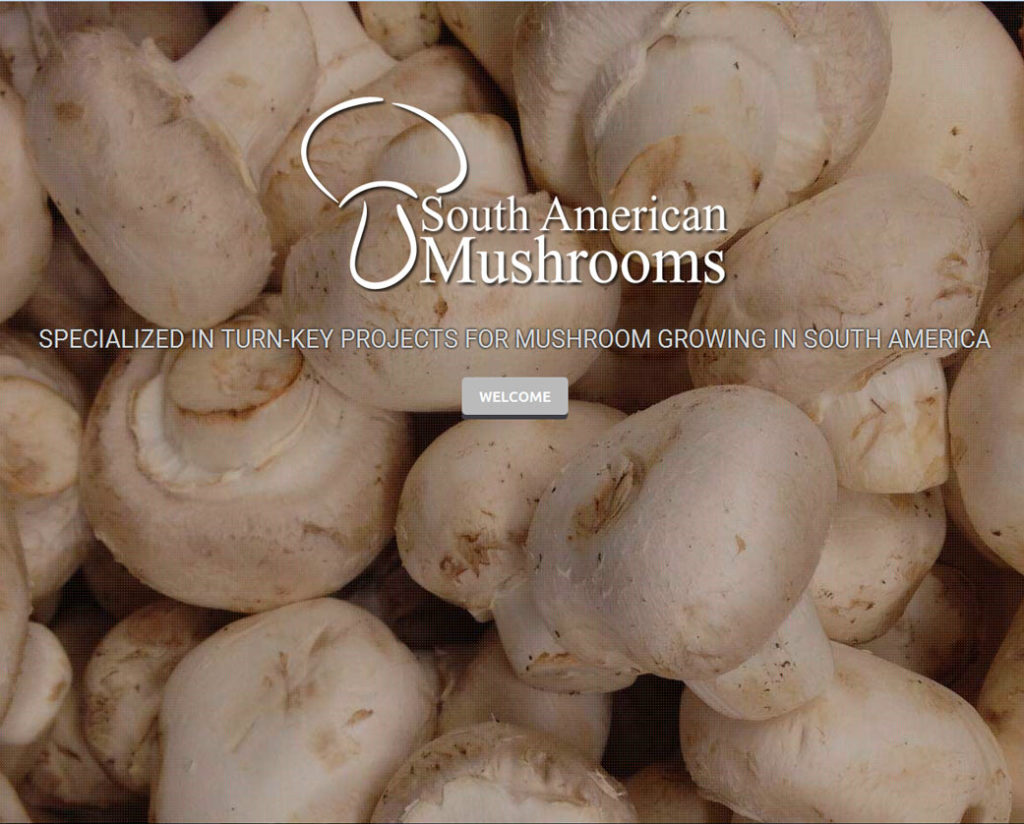 South American Mushrooms
